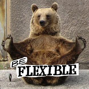 yoga-bear-santra-3